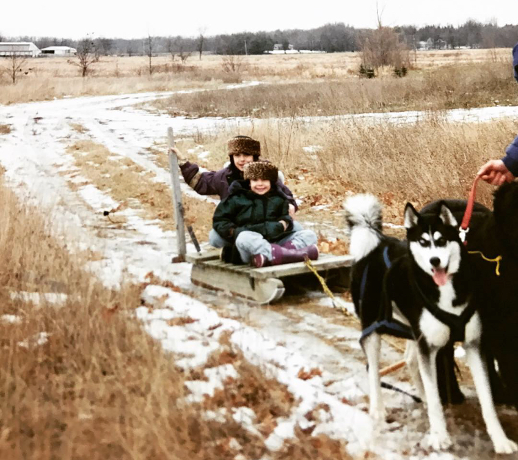 The Great Dogsled Rescue Part II: The Journey to Nome