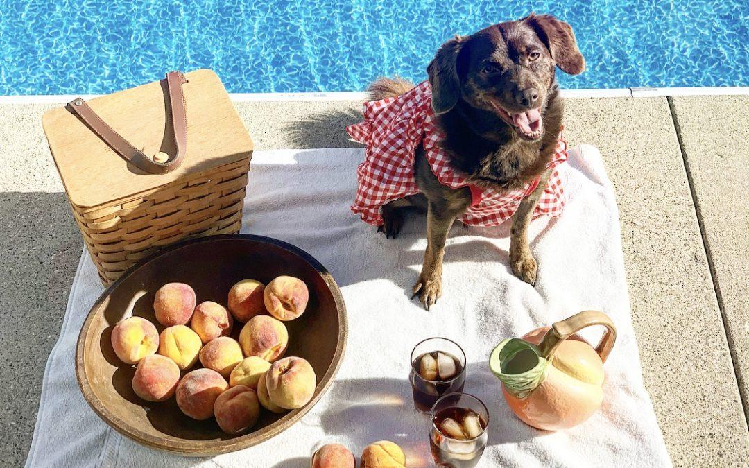 Minna's Classy, Fabulous & Peachy Labor Day Weekend