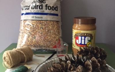 Kid's Activity – Making a Bird Feeder