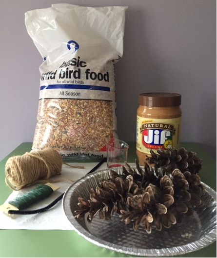 Kid's Activity – Making a Bird Feeder